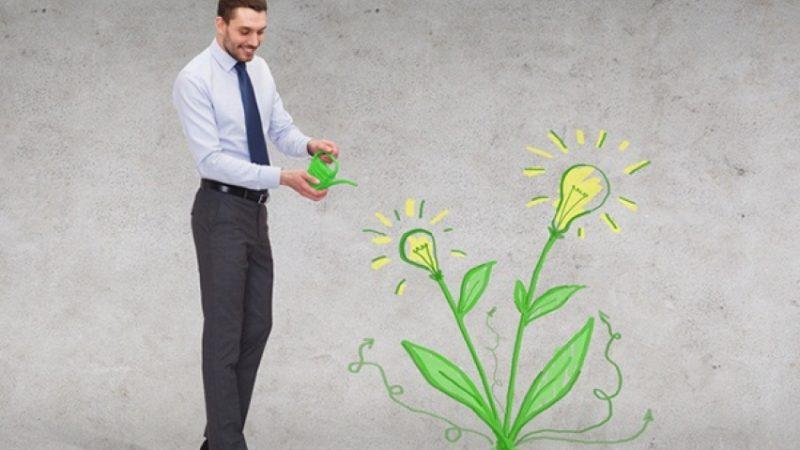 programa-especializado:-emprendimiento-social