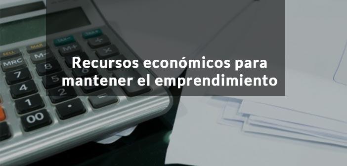 recursos-economicos-para-mantener-el-emprendimiento-siempre-a-flote